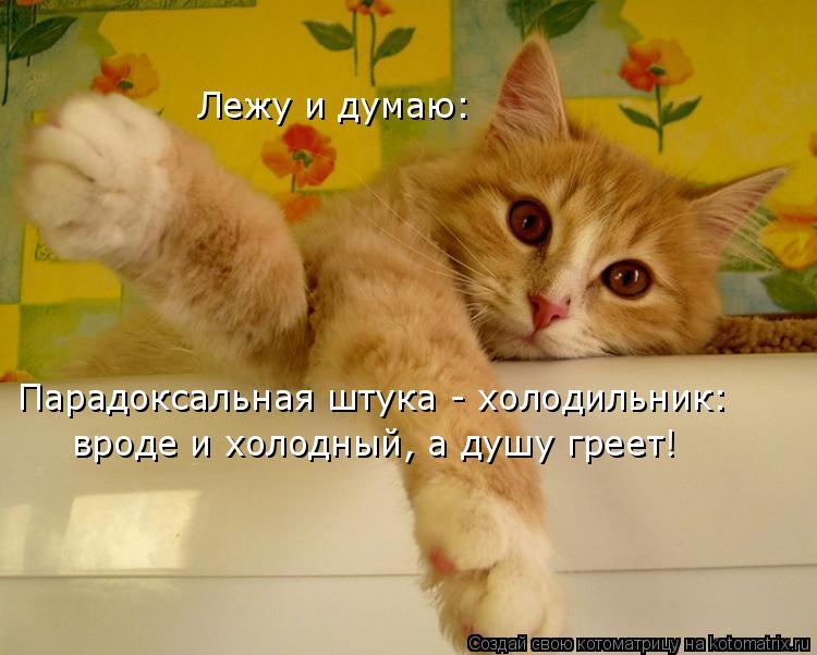 Котоматрица: Парадоксальная штука - холодильник: вроде и холодный, а душу греет! Лежу и думаю: