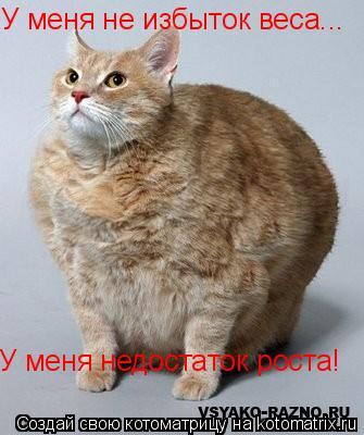 Котоматрица: У меня не избыток веса... У меня недостаток роста!