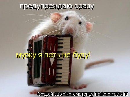 Котоматрица: предупреждаю сразу мурку я петь не буду!