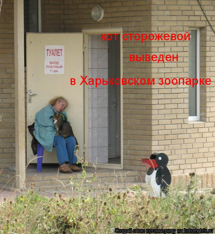 Котоматрица: кот сторожевой выведен в Харьковском зоопарке