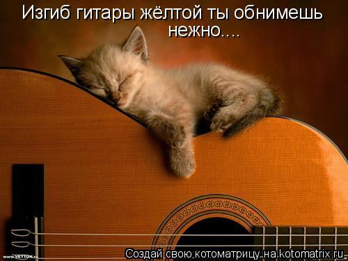 Котоматрица: Изгиб гитары жёлтой ты обнимешь нежно....