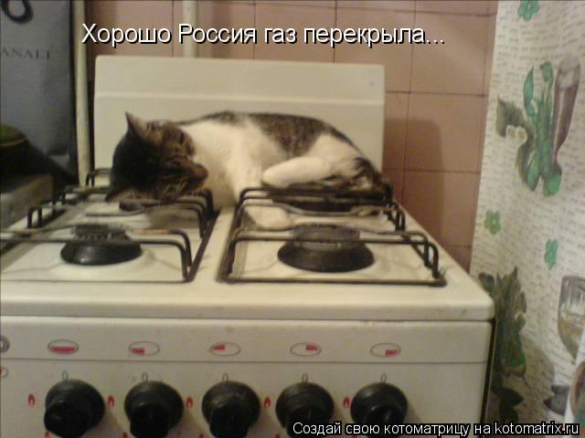 Котоматрица: Хорошо Россия газ перекрыла...