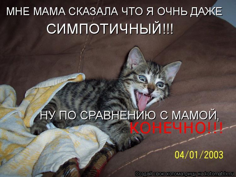 Котоматрица: МНЕ МАМА СКАЗАЛА ЧТО Я ОЧНЬ ДАЖЕ СИМПОТИЧНЫЙ!!! НУ ПО СРАВНЕНИЮ С МАМОЙ, КОНЕЧНО!!!