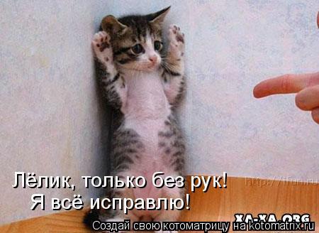 Котоматрица: Лёлик, только без рук! Я всё исправлю!