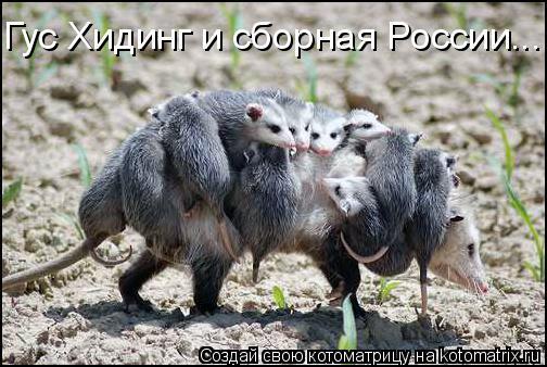 Котоматрица: Гус Хидинг и сборная России...