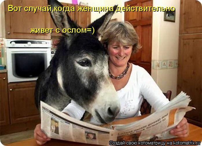 Котоматрица: Вот случай,когда женщина действительно  живет с ослом=)