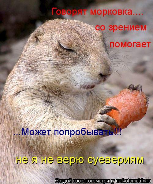 Котоматрица: Говорят морковка.... со зрением помогает ...Может попробывать!!! не я не верю суевериям