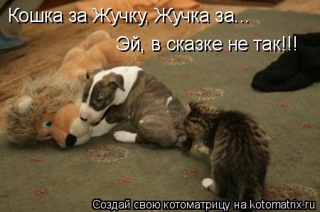Котоматрица: Кошка за Жучку, Жучка за... Эй, в сказке не так!!!