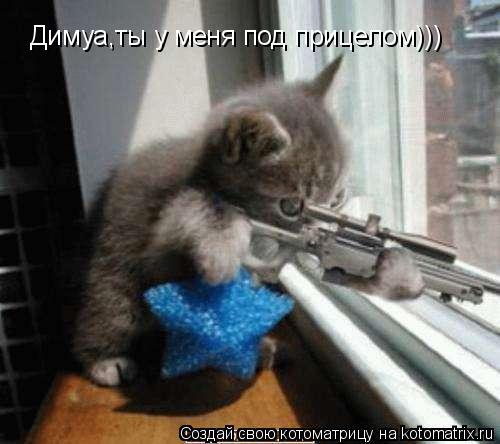 Котоматрица: Димуа,ты у меня под прицелом)))