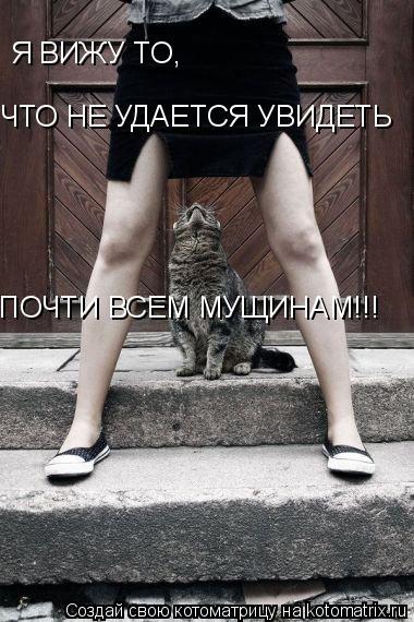 Котоматрица: Я ВИЖУ ТО, ЧТО НЕ УДАЕТСЯ УВИДЕТЬ ПОЧТИ ВСЕМ МУЩИНАМ!!!