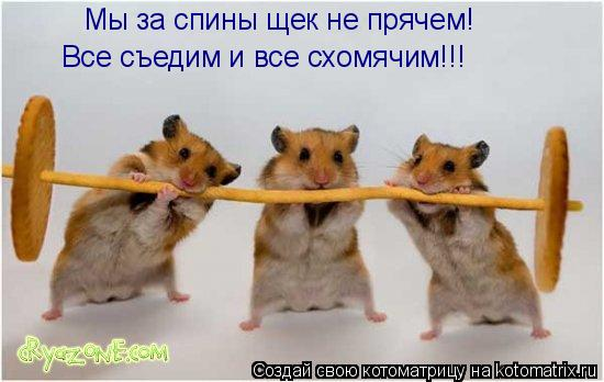 Котоматрица: Мы за спины щек не прячем! Все съедим и все схомячим!!!