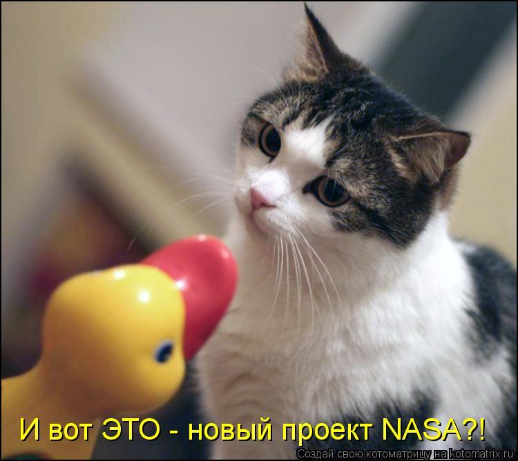 Котоматрица: И вот ЭТО - новый проект NASA?!
