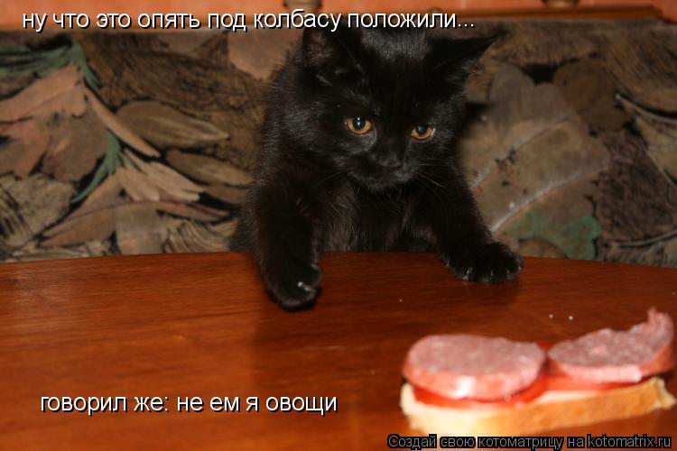 Котоматрица: ну что это опять под колбасу положили ... говорил же: не ем я овощи