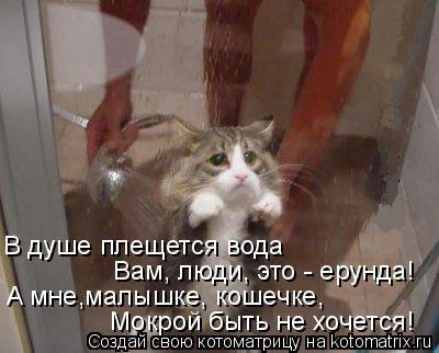 Котоматрица: В душе плещется вода  Вам, люди, это - ерунда!   A мне,малышке, кошечке,  Мокрой быть не хочется!
