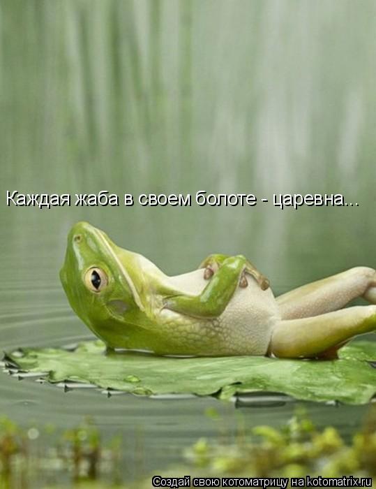 Котоматрица: Каждая жаба в своем болоте - царевна...