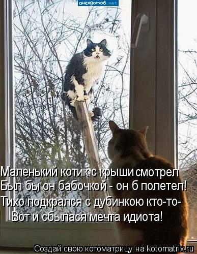Котоматрица: Маленький котик с крыши  смотрел Был бы он бабочкой - он б полетел! Тихо подкрался с дубинкою кто-то- Вот и сбылася мечта идиота!