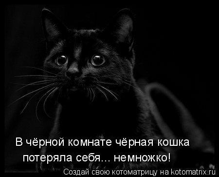 Котоматрица: В чёрной комнате чёрная кошка  потеряла себя... немножко!