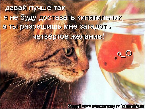 Котоматрица: давай лучше так: я не буду доставать кипятильник, а ты разрешишь мне загадать четвёртое желание! о_О