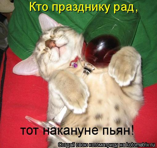 Котоматрица: Кто празднику рад, тот накануне пьян!