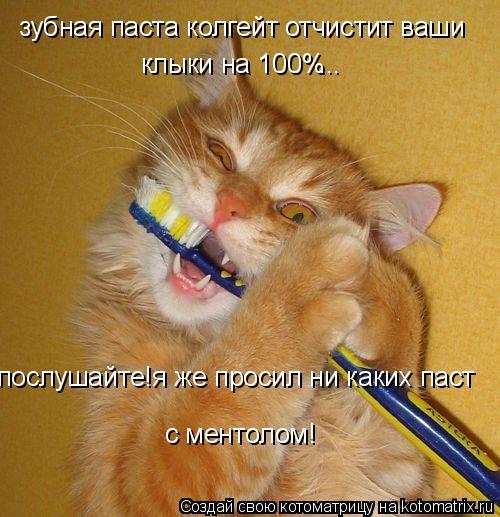 Котоматрица: зубная паста колгейт отчистит ваши клыки на 100% ... послушайте!я же просил ни каких паст с ментолом!