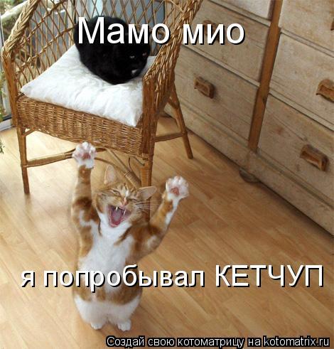 Котоматрица: Мамо мио я попробывал КЕТЧУП