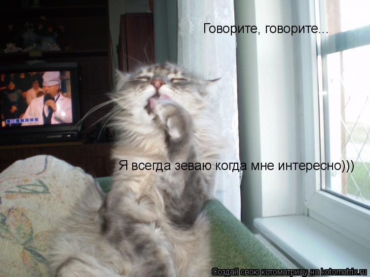 Котоматрица: Говорите, говорите... Я всегда зеваю когда мне интересно)))
