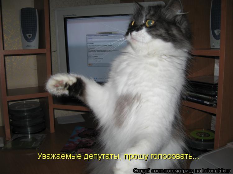 Котоматрица: Уважаемые депутаты, прошу голосовать...