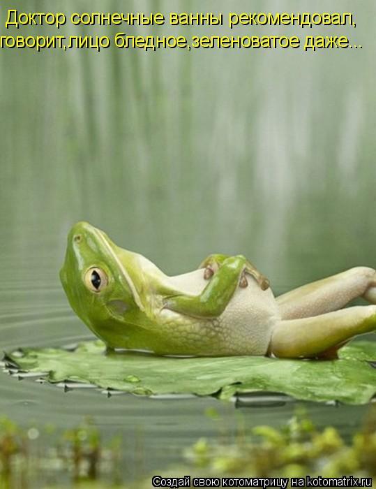 Котоматрица: Доктор солнечные ванны рекомендовал, говорит,лицо бледное,зеленоватое даже...