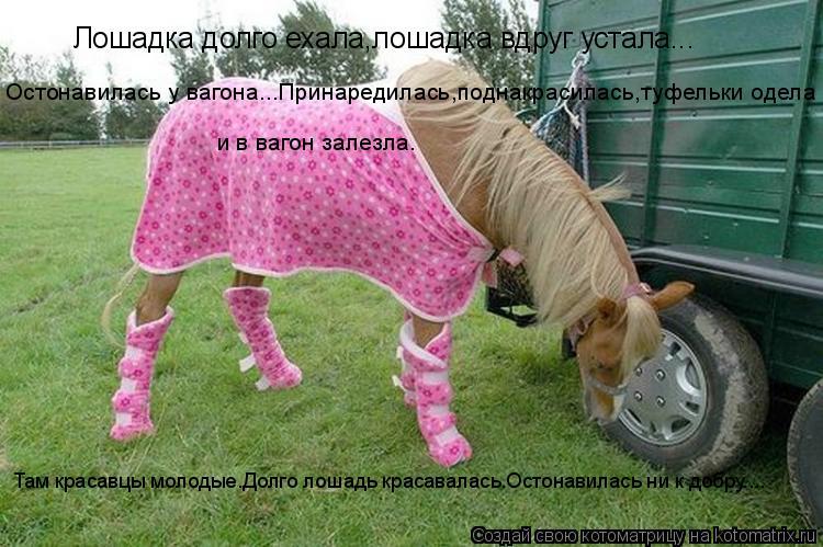 Котоматрица: Лошадка долго ехала,лошадка вдруг устала... Остонавилась у вагона...Принаредилась,поднакрасилась,туфельки одела и в вагон залезла. Там крас