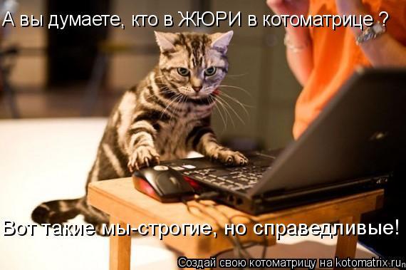Котоматрица: А вы думаете, кто в ЖЮРИ в котоматрице ? Вот такие мы-строгие, но справедливые!