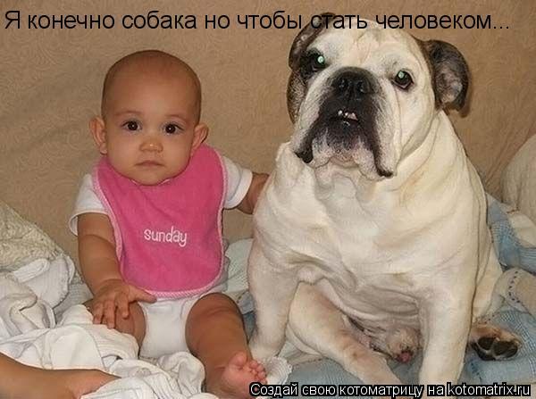 Котоматрица: Я конечно собака но чтобы стать человеком...