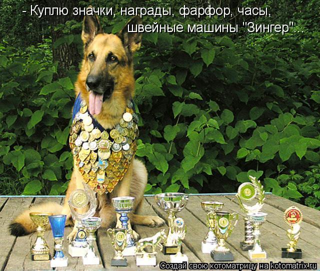 "Котоматрица: - Куплю значки, награды, фарфор, часы, швейные машины ""Зингер""..."