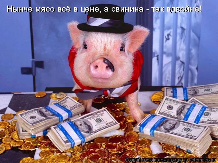 Котоматрица: Нынче мясо всё в цене, а свинина - так вдвойне!