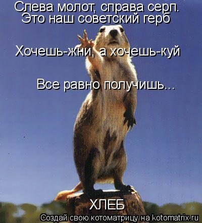 Котоматрица: Слева молот, справа серп. Это наш советский герб Все равно получишь... Хочешь-жни, а хочешь-куй ХЛЕБ
