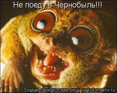 Котоматрица: Не поеду в Чернобыль!!!