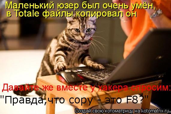 """Котоматрица: в Totale файлы копировал он Давайте же вместе у хакера спросим: """"Правда,что copy - это F8?"""" Маленький юзер был очень умён,"""