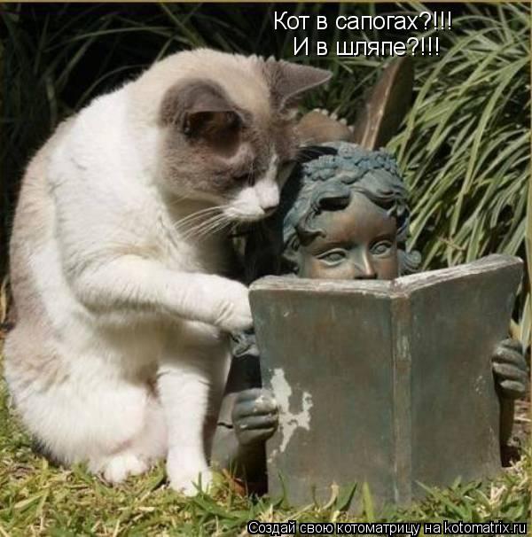 Котоматрица: Кот в сапогах?!!! И в шляпе?!!!
