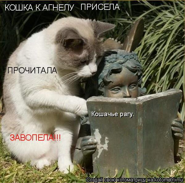 Котоматрица: КОШКА К АГНЕЛУ ПРИСЕЛА ПРОЧИТАЛА ЗАВОПЕЛА!!! Кошачье рагу.