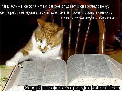 Котоматрица: Чем ближе сессия - тем ближе студент к сверхчеловеку, он перестает нуждаться в еде, сне и прочих развлечениях, а лишь стремится к знаниям...
