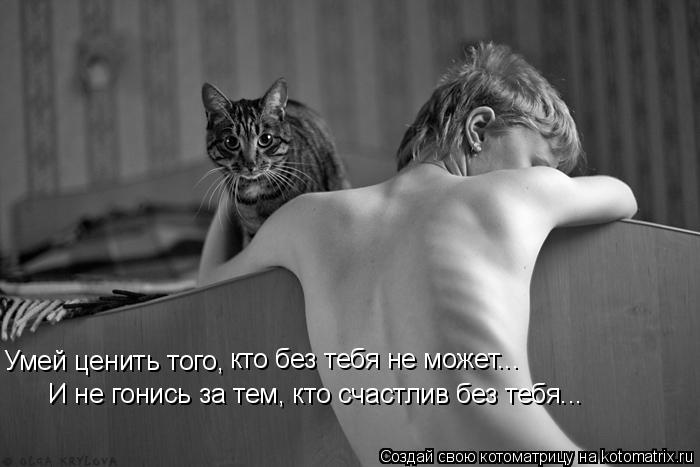 Котоматрица: Умей ценить того, кто без тебя не может...  И не гонись за тем, кто счастлив без тебя...