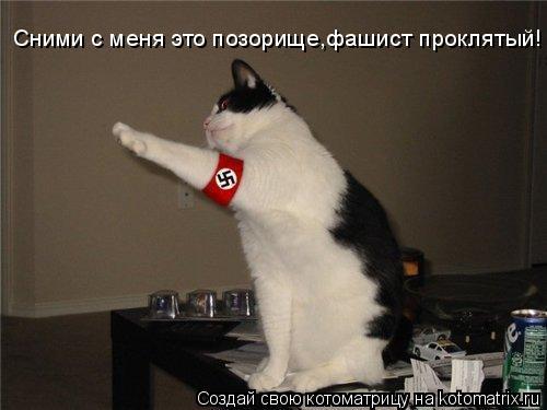 Котоматрица: Сними с меня это позорище,фашист проклятый!