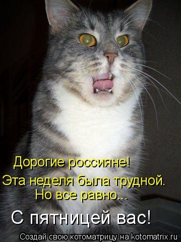 Котоматрица: Дорогие россияне! Эта неделя была трудной. Но все равно... С пятницей вас!