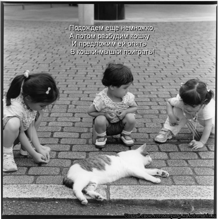 Котоматрица: - Подождем еще немножко, А потом разбудим кошку И предложим ей опять В кошки-мышки поиграть!