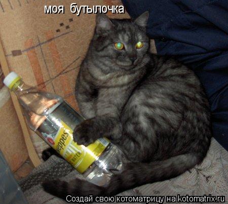 Котоматрица: моя  бутылочка