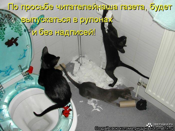 Котоматрица: По просьбе читателей, наша газета, будет выпускаться в рулонах и без надписей!