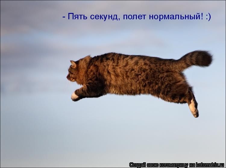 Котоматрица: - Пять секунд, полет нормальный! :)