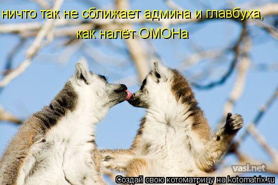Котоматрица: ничто так не сближает админа и главбуха, как налёт ОМОНа