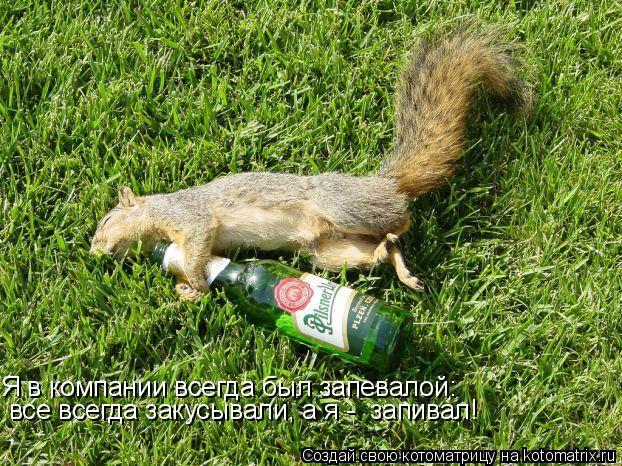 Котоматрица: Я в компании всегда был запевалой: все всегда закусывали, а я -  запивал!