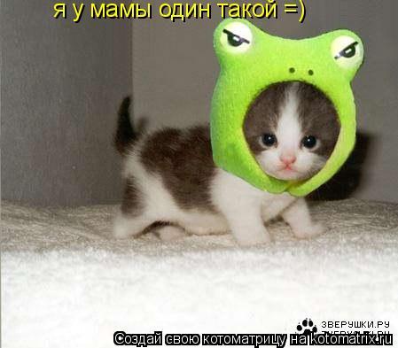Котоматрица: я у мамы один такой =)