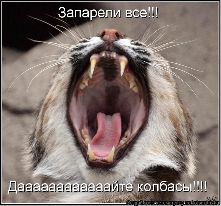 Котоматрица: Запарели все Запарели все!!! Даааааааааааайте колбасы!!!!
